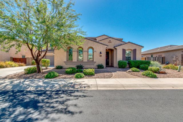 13379 W Creosote Drive, Peoria, AZ 85383 (MLS #5833016) :: The Garcia Group