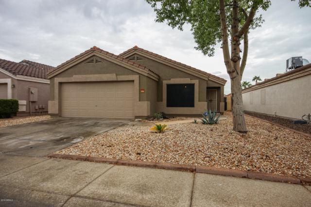 13034 W Via Camille, El Mirage, AZ 85335 (MLS #5833029) :: The Garcia Group @ My Home Group
