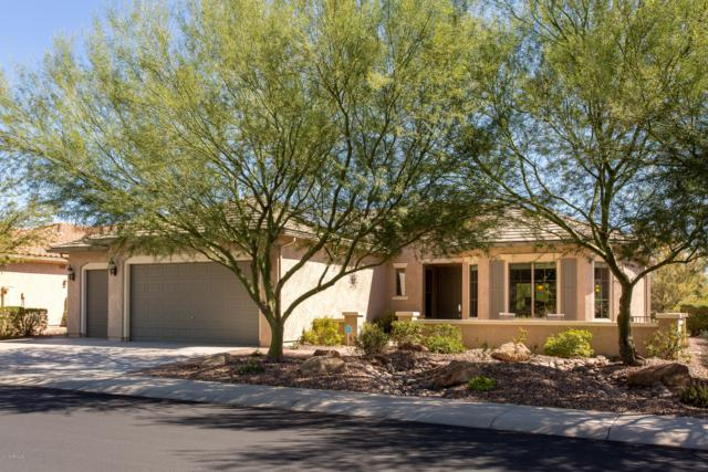 3655 N Presidential Drive, Florence, AZ 85132 (MLS #5833045) :: Yost Realty Group at RE/MAX Casa Grande