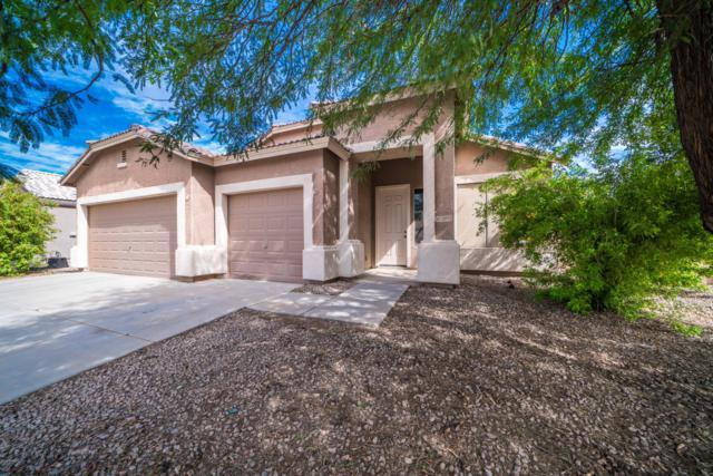 12075 N 141ST Lane, Surprise, AZ 85379 (MLS #5833121) :: Arizona Best Real Estate