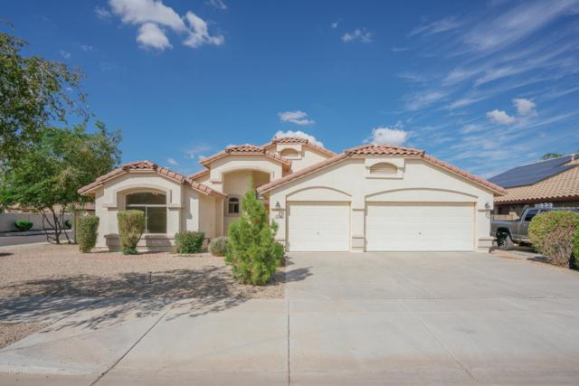 16594 W Adams Street, Goodyear, AZ 85338 (MLS #5833139) :: Five Doors Network