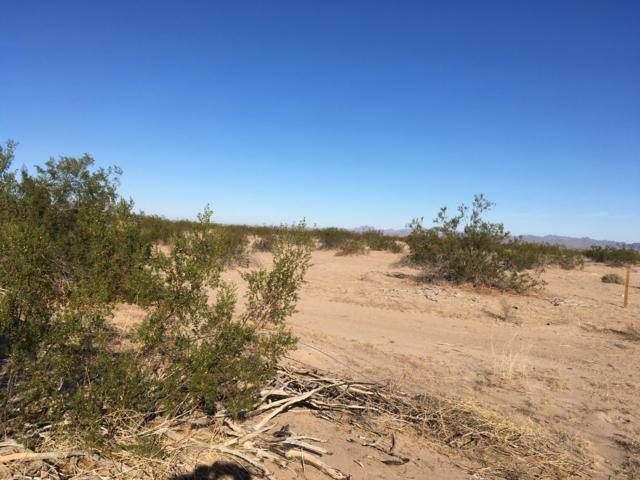 8XXX S Ave 38 E, Wellton, AZ 85356 (MLS #5833155) :: The Garcia Group @ My Home Group