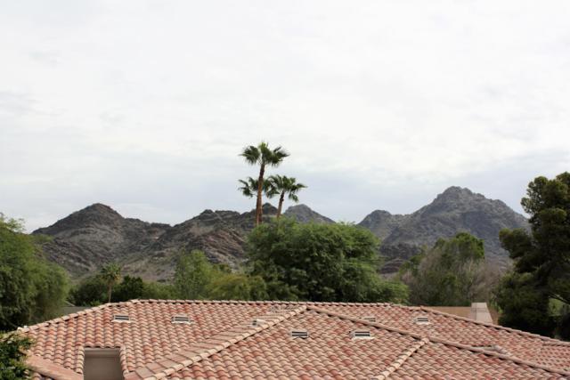 1747 E Northern Avenue #277, Phoenix, AZ 85020 (MLS #5833162) :: Team Wilson Real Estate