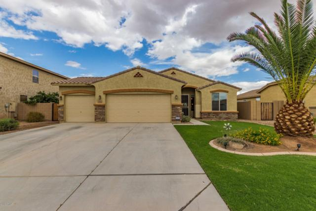 894 W Hereford Drive, San Tan Valley, AZ 85143 (MLS #5833194) :: Yost Realty Group at RE/MAX Casa Grande