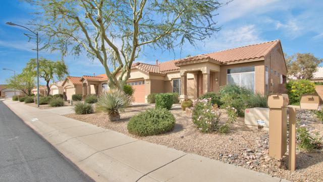 14322 W Pecos Lane, Sun City West, AZ 85375 (MLS #5833215) :: The Garcia Group