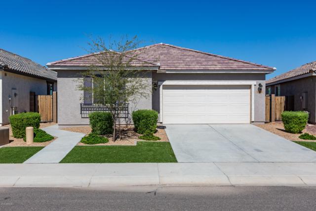 12052 W Desert Sun Lane, Peoria, AZ 85383 (MLS #5833279) :: The Garcia Group @ My Home Group