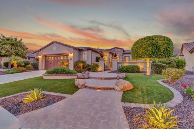 12974 W Oberlin Way, Peoria, AZ 85383 (MLS #5833299) :: The Garcia Group @ My Home Group