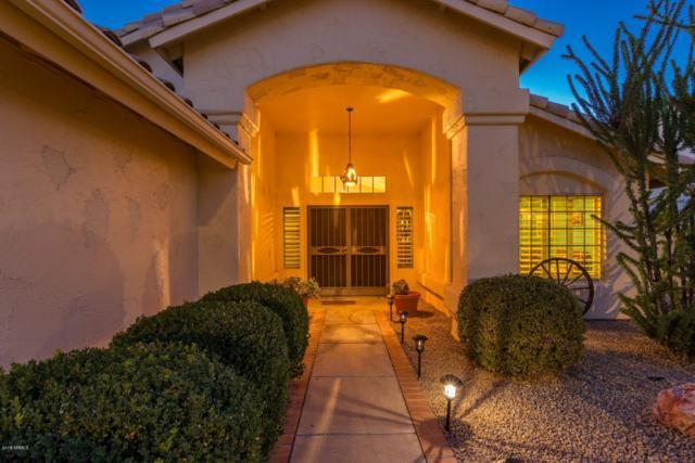 17340 N Raindance Road, Surprise, AZ 85374 (MLS #5833303) :: Arizona Best Real Estate