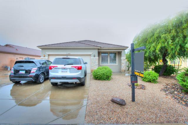 44717 W Portabello Road, Maricopa, AZ 85139 (MLS #5833309) :: Yost Realty Group at RE/MAX Casa Grande