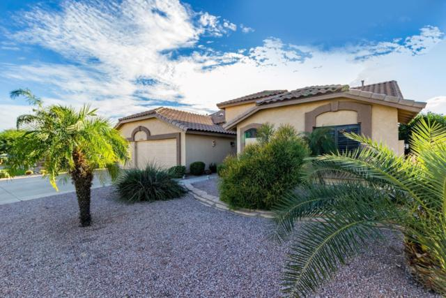 18876 N 88TH Drive, Peoria, AZ 85382 (MLS #5833353) :: Arizona Best Real Estate