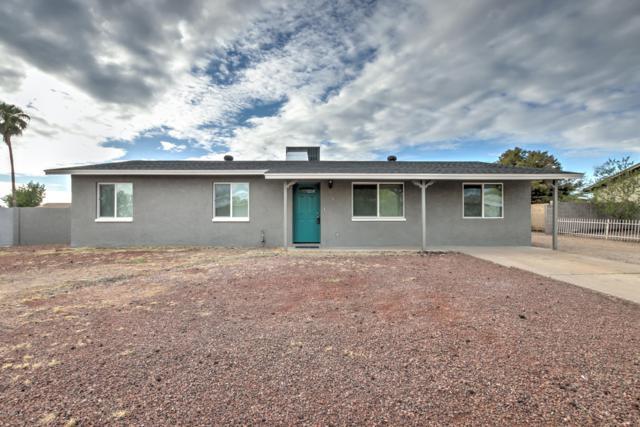 716 N 95TH Circle, Mesa, AZ 85207 (MLS #5833363) :: Arizona Best Real Estate