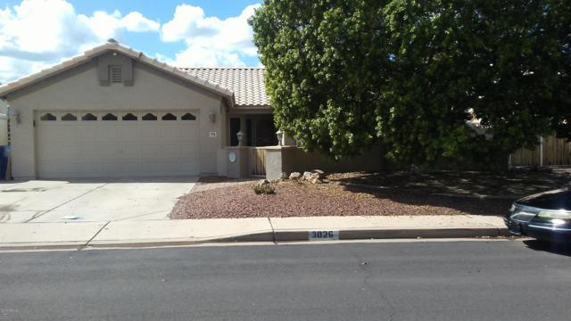 3026 N Olympic, Mesa, AZ 85215 (MLS #5833376) :: Yost Realty Group at RE/MAX Casa Grande