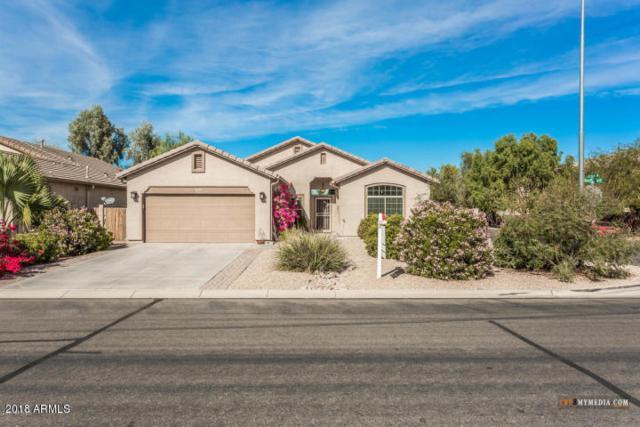 43948 W Juniper Avenue, Maricopa, AZ 85138 (MLS #5833402) :: Yost Realty Group at RE/MAX Casa Grande