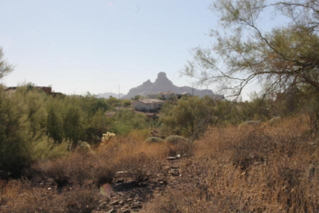 9310 N Powderhorn Drive, Fountain Hills, AZ 85268 (MLS #5833406) :: Brett Tanner Home Selling Team