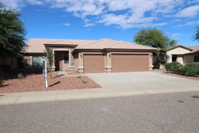14832 W Maui Lane, Surprise, AZ 85379 (MLS #5833415) :: RE/MAX Excalibur