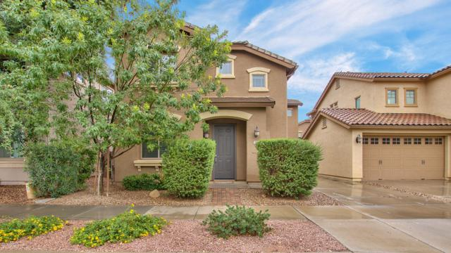 19163 E Seagull Drive, Queen Creek, AZ 85142 (MLS #5833433) :: Kelly Cook Real Estate Group