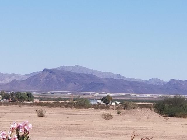 51181 60 1/2 Street, Salome, AZ 85348 (MLS #5833450) :: My Home Group