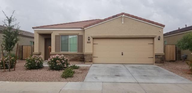 8130 W Pueblo Avenue, Phoenix, AZ 85043 (MLS #5833453) :: Team Wilson Real Estate