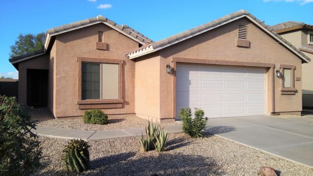 43826 W Lindgren Drive, Maricopa, AZ 85138 (MLS #5833459) :: Keller Williams Legacy One Realty