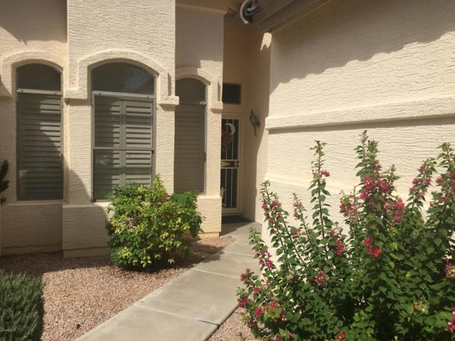 23816 S Harmony Way #37, Sun Lakes, AZ 85248 (MLS #5833471) :: My Home Group