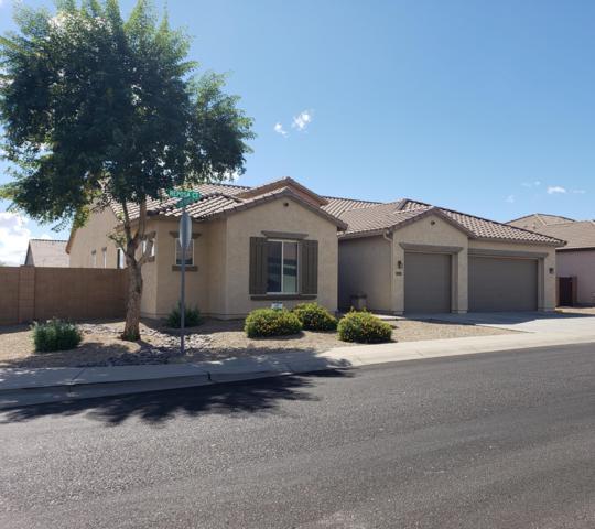17975 E Reposa Court, Gold Canyon, AZ 85118 (MLS #5833516) :: Realty Executives