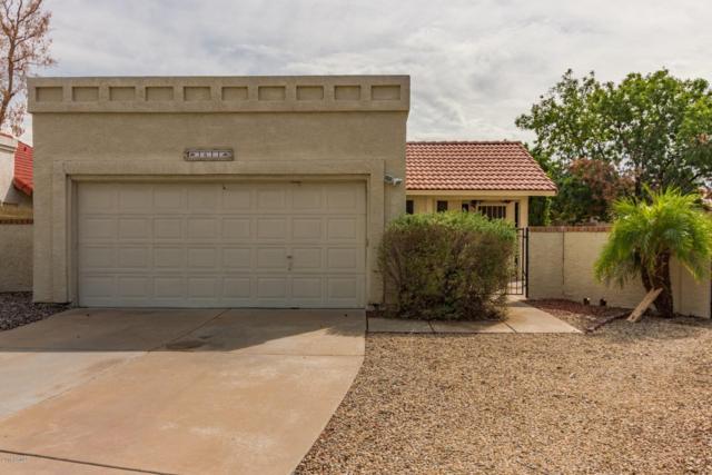 3611 W Villa Theresa Drive, Glendale, AZ 85308 (MLS #5833524) :: Occasio Realty