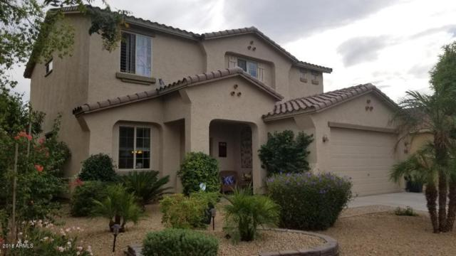 17561 W Morning Glory Street, Goodyear, AZ 85338 (MLS #5833564) :: Five Doors Network