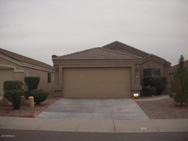 24091 W Twilight Trail, Buckeye, AZ 85326 (MLS #5833617) :: Desert Home Premier