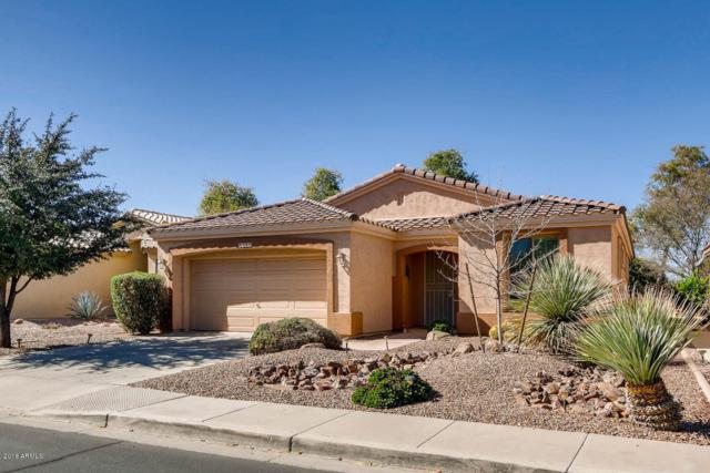 5236 S Citrus Lane, Gilbert, AZ 85298 (MLS #5833699) :: The Garcia Group @ My Home Group