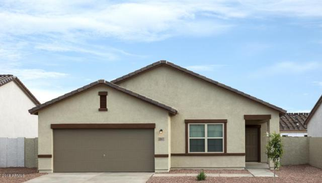 4626 W Feather Plume Drive, San Tan Valley, AZ 85142 (MLS #5833708) :: Yost Realty Group at RE/MAX Casa Grande