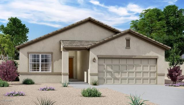 4720 W Feather Plume Drive, San Tan Valley, AZ 85142 (MLS #5833713) :: Yost Realty Group at RE/MAX Casa Grande