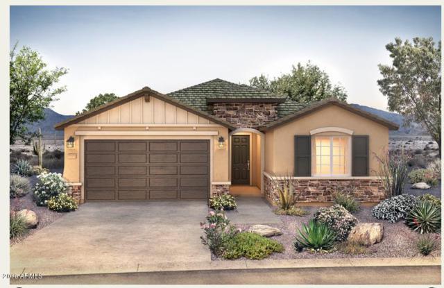 9701 E Talon Avenue, Mesa, AZ 85212 (MLS #5833733) :: Gilbert Arizona Realty