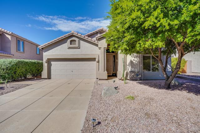 3055 N Red Mountain #142, Mesa, AZ 85207 (MLS #5833740) :: The Kenny Klaus Team