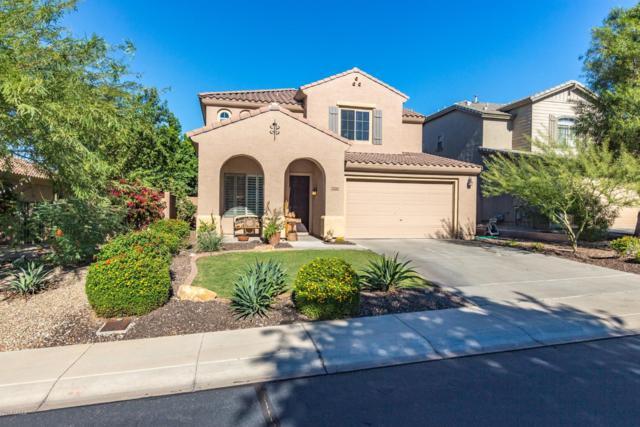 7170 W Red Hawk Drive, Peoria, AZ 85383 (MLS #5833856) :: Desert Home Premier