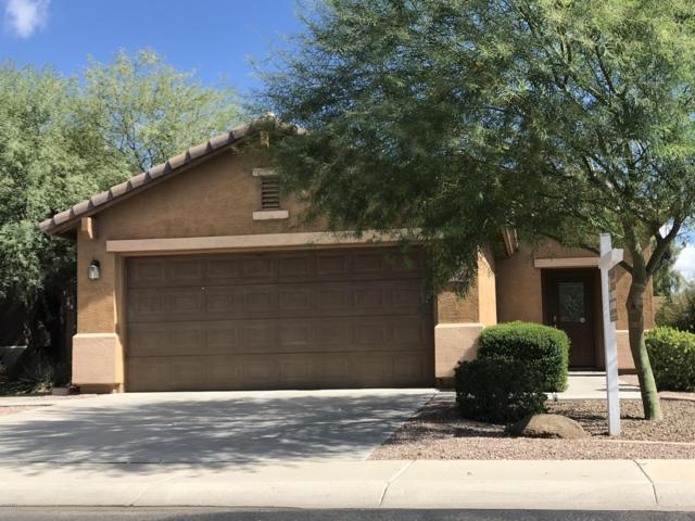 19493 N Miller Way, Maricopa, AZ 85139 (MLS #5833904) :: Keller Williams Legacy One Realty