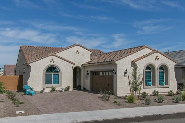 25946 W Piute Avenue, Buckeye, AZ 85396 (MLS #5833922) :: The Garcia Group @ My Home Group