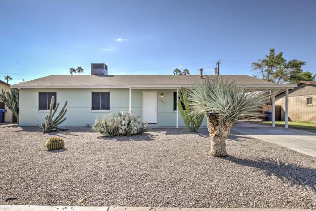 1251 W Toledo Street, Chandler, AZ 85224 (MLS #5833934) :: HomeSmart