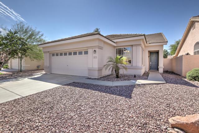 1421 E Shannon Street, Chandler, AZ 85225 (MLS #5833936) :: HomeSmart