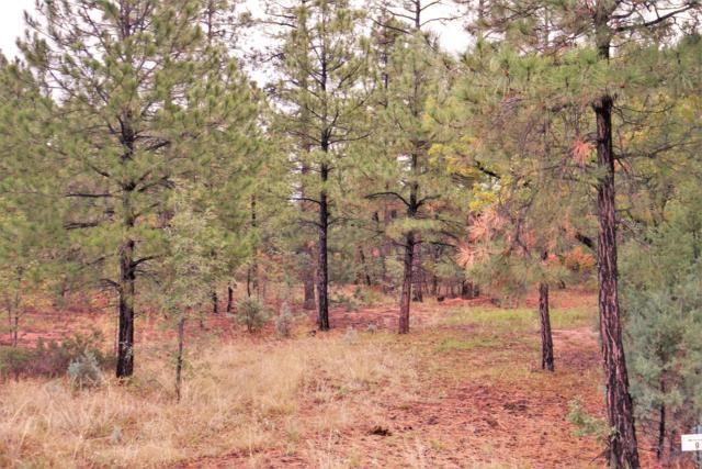 5921 Starlight Ridge Road, Lakeside, AZ 85929 (MLS #5833958) :: Arizona Best Real Estate