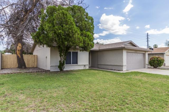 5019 N 71ST Drive, Glendale, AZ 85303 (MLS #5834062) :: HomeSmart