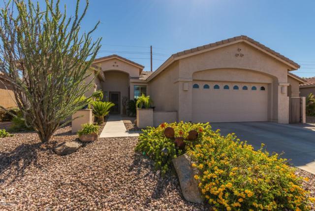 9839 E Stoney Vista Drive, Sun Lakes, AZ 85248 (MLS #5834070) :: Gilbert Arizona Realty