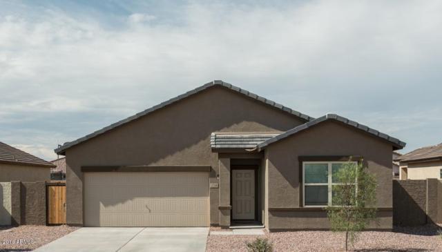 4658 W Feather Plume Drive, San Tan Valley, AZ 85142 (MLS #5834072) :: Realty Executives