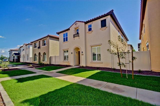 850 S Henry Lane, Gilbert, AZ 85296 (MLS #5834093) :: The Garcia Group @ My Home Group