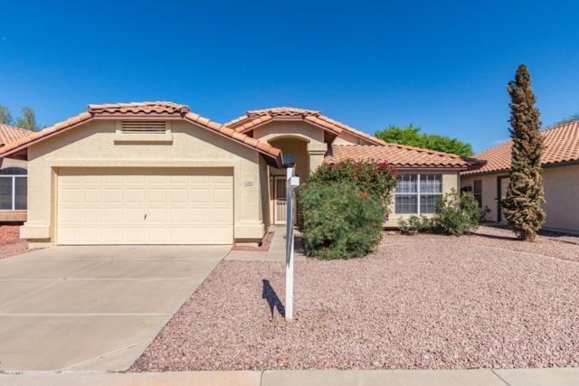 1702 W Mercury Way, Chandler, AZ 85224 (MLS #5834127) :: HomeSmart
