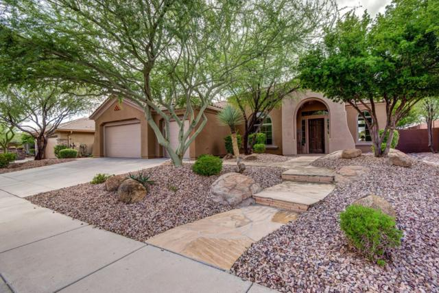 41008 N Club Pointe Drive, Anthem, AZ 85086 (MLS #5834172) :: Desert Home Premier