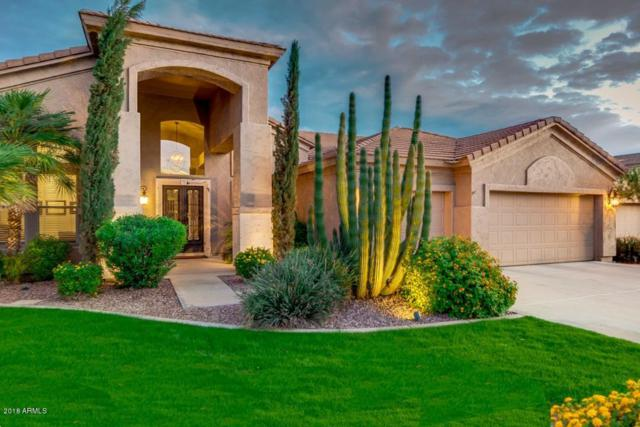 1007 W Armstrong Way, Chandler, AZ 85286 (MLS #5834177) :: Occasio Realty