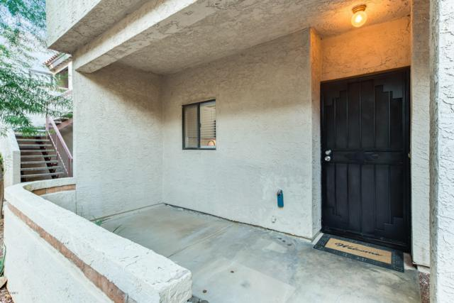 11666 N 28TH Drive #157, Phoenix, AZ 85029 (MLS #5834221) :: HomeSmart
