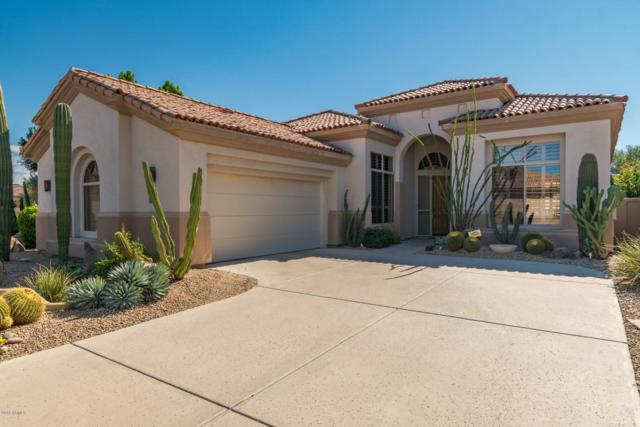 8281 E Hoverland Road, Scottsdale, AZ 85255 (MLS #5834250) :: Lifestyle Partners Team