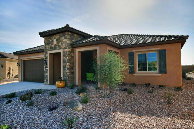 5977 W Silver Leaf Court, Florence, AZ 85132 (MLS #5834296) :: Yost Realty Group at RE/MAX Casa Grande