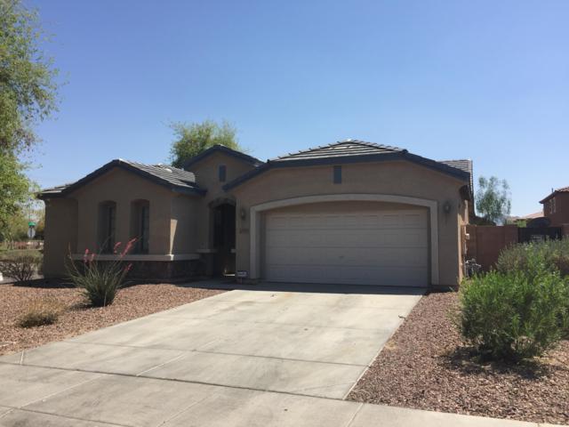12159 W Chase Lane, Avondale, AZ 85323 (MLS #5834309) :: Phoenix Property Group